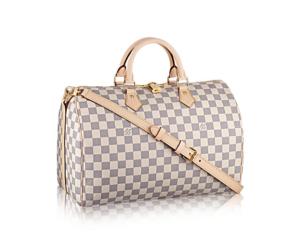 f030fa3ca2f37 Louis Vuitton Taschen und Accessoires - Geschichte zum Statussymbol