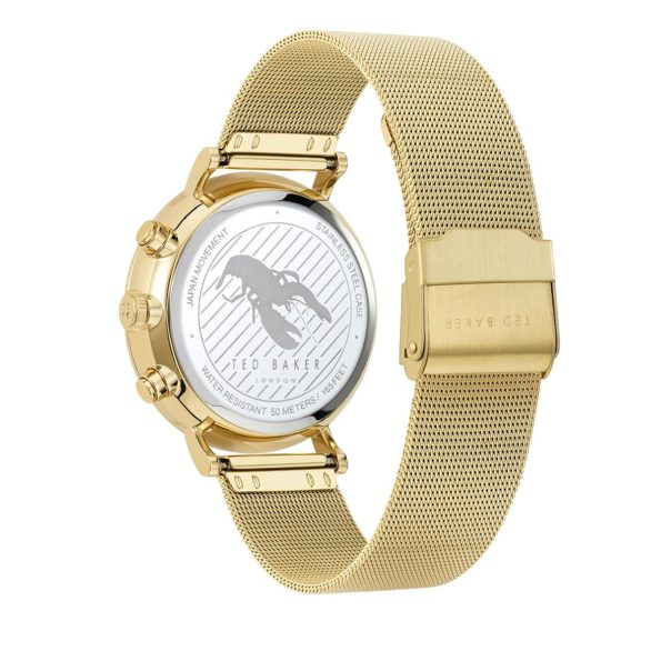 Ted-Baker-Uhr-Watch-Mimosaa-Gold-in-gold-fuer-Damen-25258127229-1